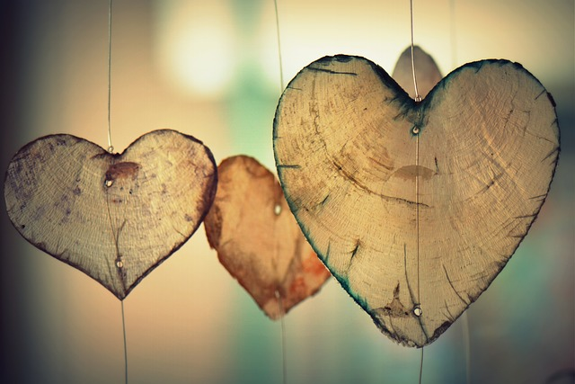 heart-700141_640.jpg